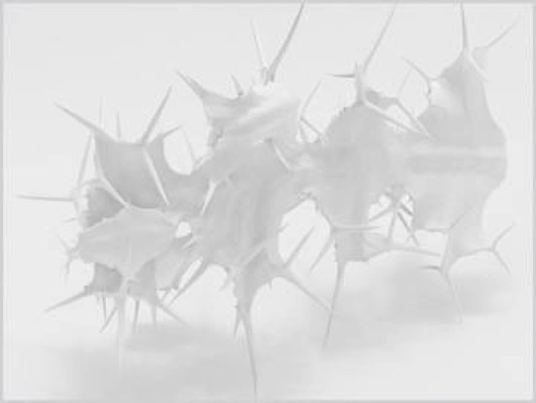 空白系列 0 01  相紙輸出 無酸裝裱(鋁板 ) 220 × 148 cm