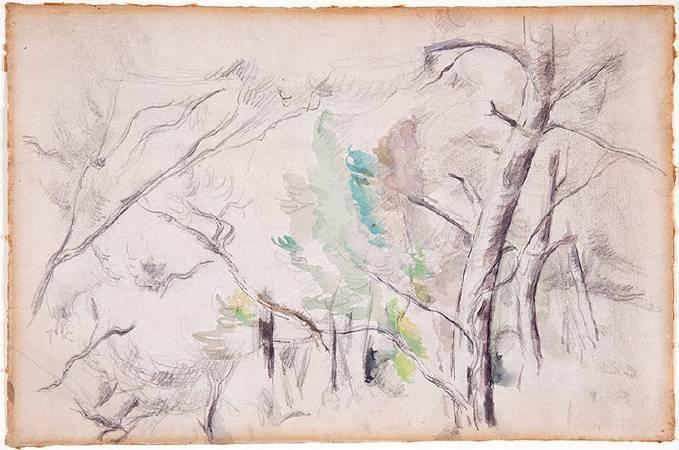 塞尚水彩畫《樹》。