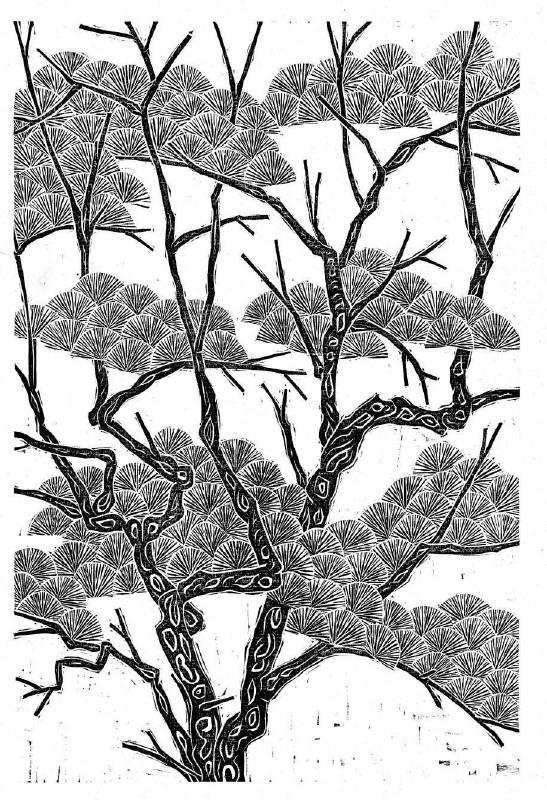 王午,《青松》,2013。