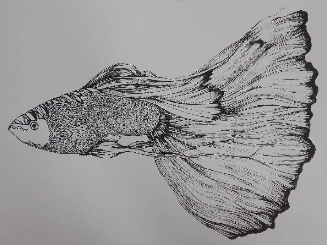 徐葦 <魚-無感>,絹印,39.3x54.6cm 2012 Ed.5