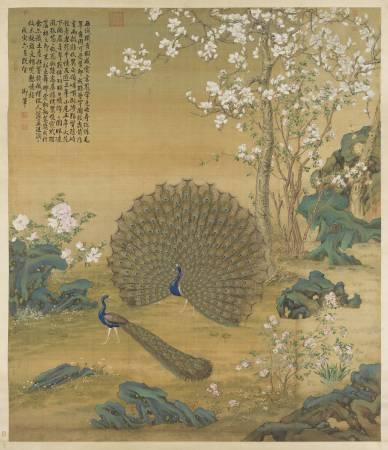 郎世寧,《畫孔雀開屏圖》。圖/國立故宮博物院提供。
