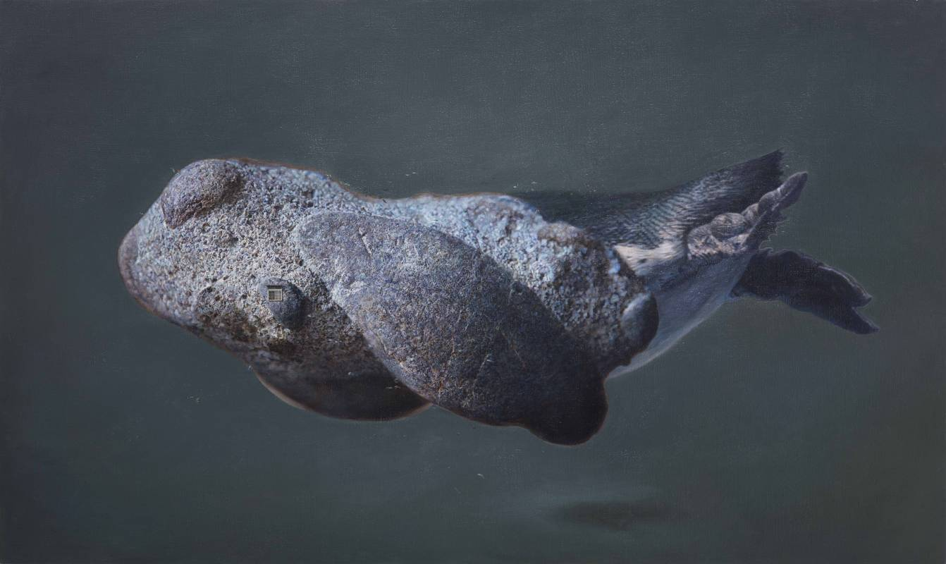 傅浩軒,《北極匿聲》,2015。