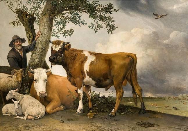 包路斯•波特《年輕的公牛》。圖/取自Wikipedia。
