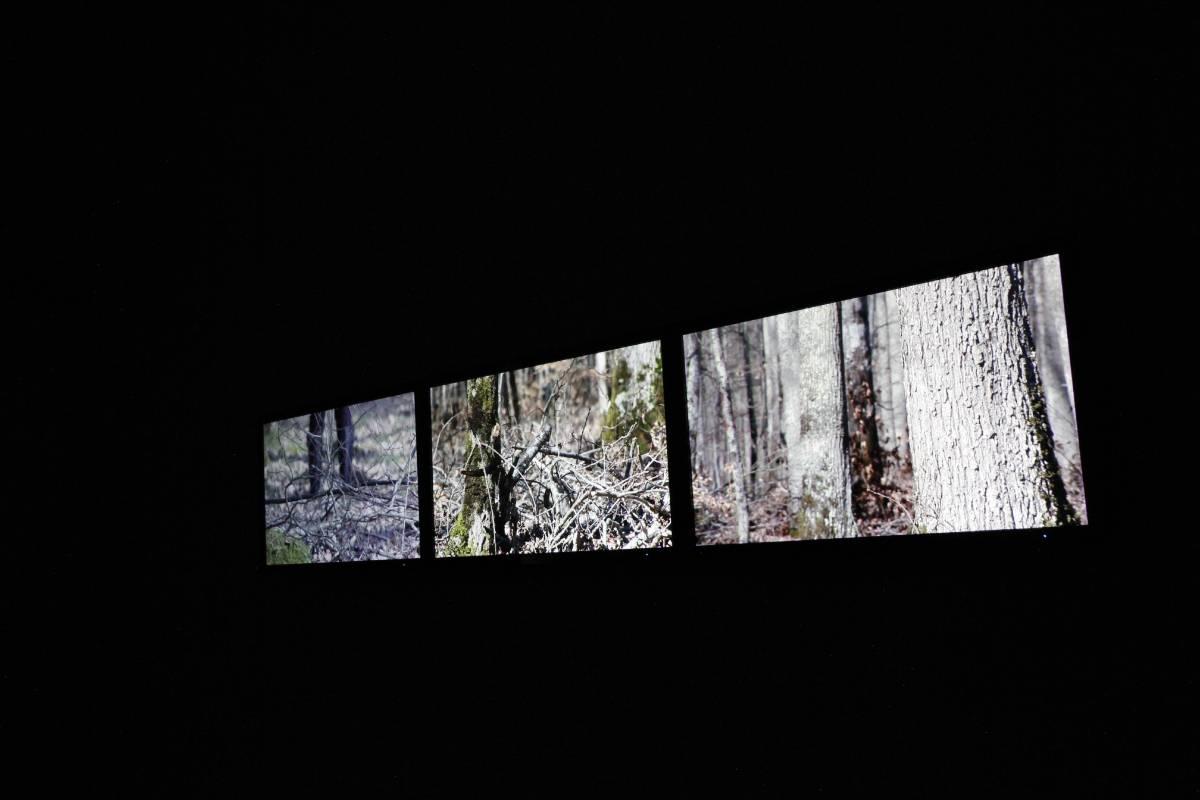 圖/非池中藝術網攝。