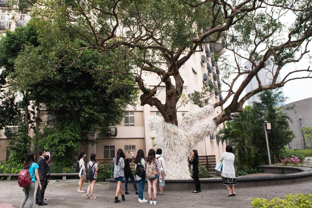 導覽:游文富[樟樹的新羽衣]@萬才館戶外