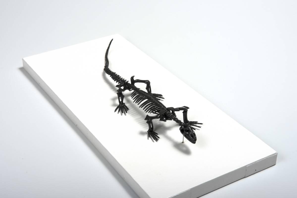 秋永邦洋Kunihiro AKINGANA,《蜥蜴Mimicry (lizard)》,2015。
