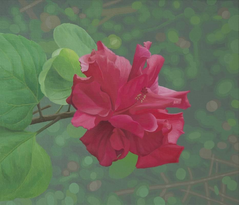 郭慧禪   朱槿花  53×45.5cm   壓克力顏料、畫布  2016