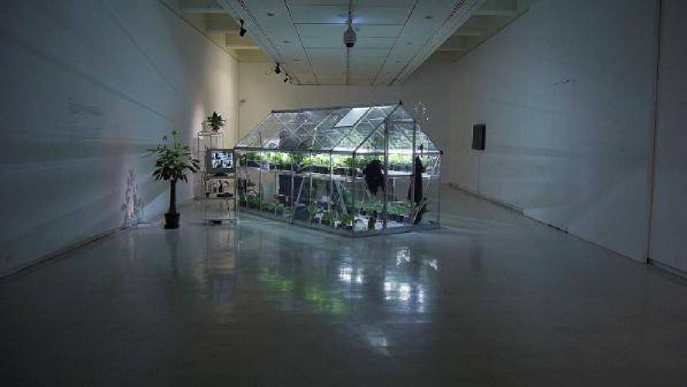 斜紋夜蛾,台北市立美術館現場裝置 2015