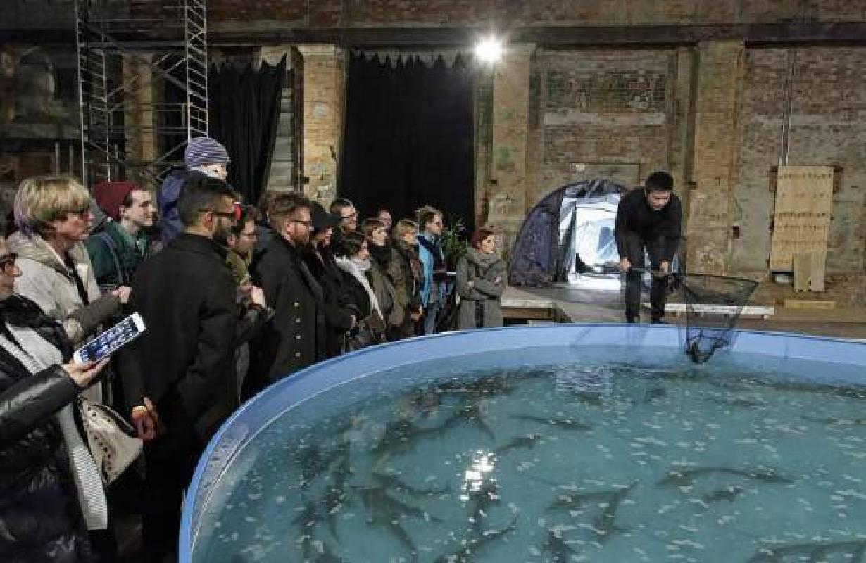 子非魚焉知魚之樂,萊比錫發電廠藝術中心現場裝置 2015