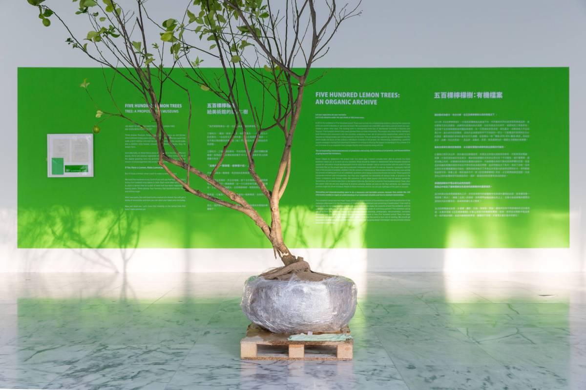 《五百棵檸檬樹:有機檔案》