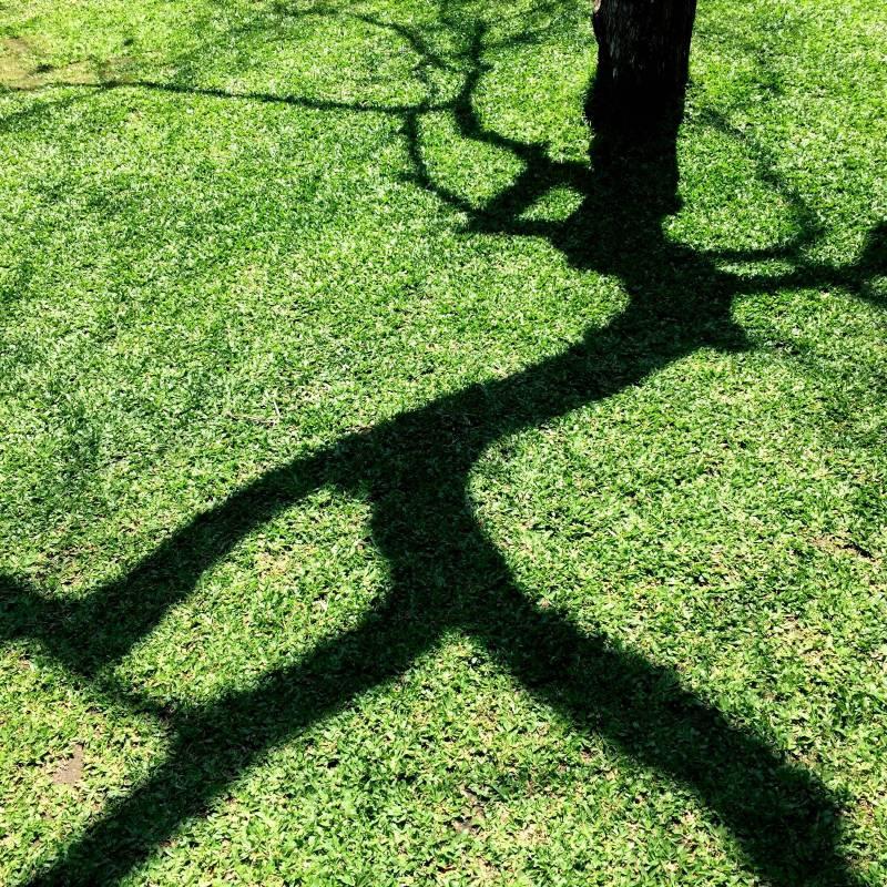 漫步的時光 30cmX30cm Second H 攝影