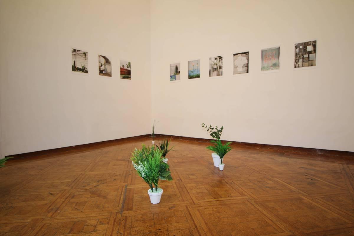 陳以軒,《城市系列》,攝影裝置及人造植栽,2017。