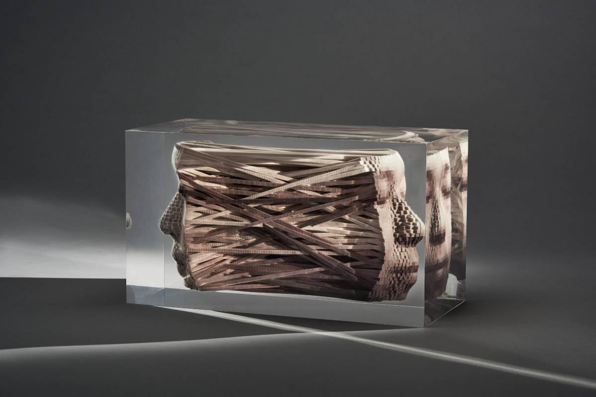 黃心健_血脈之線_2017_3D列印、Lucite_16.7×29.7×13.7cm