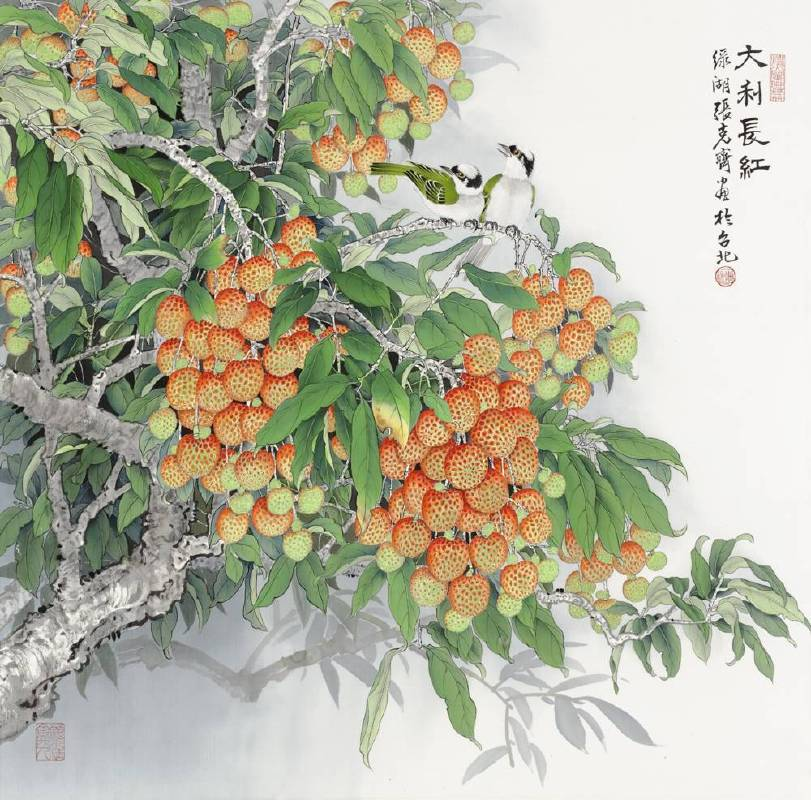 張克齊-大利長紅
