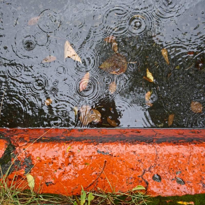 雨水自畫像–5, 100x100cm, 微噴於畫布、壓克力, 2017