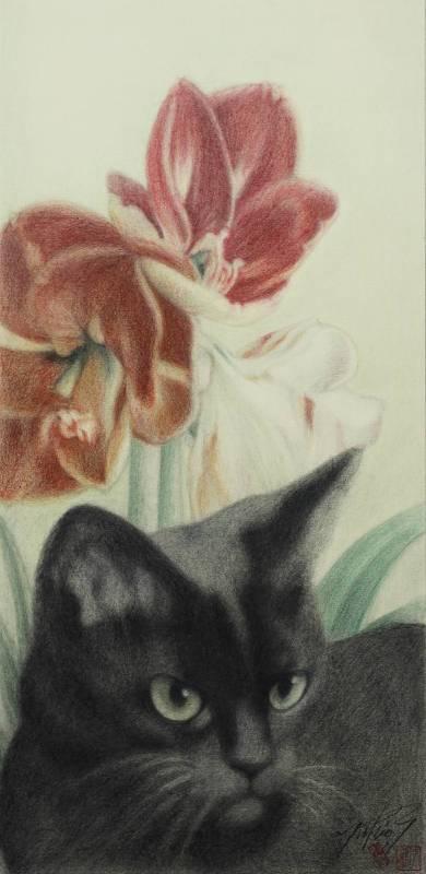 高橋行雄, 孤挺花, 2016年, 26.5×55cm, 彩色鉛筆.版畫紙