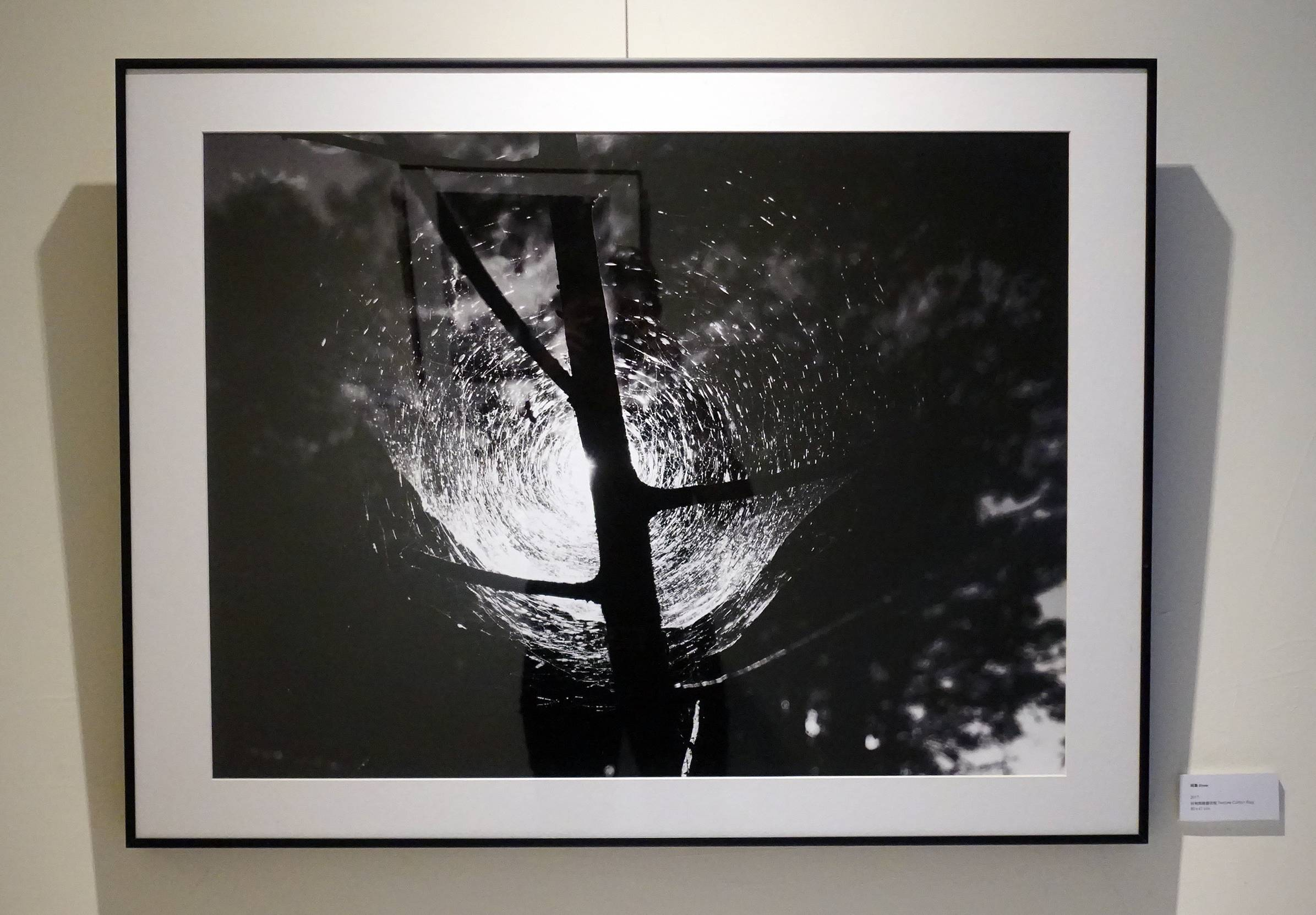 涂愷妍作品《歸屬》。