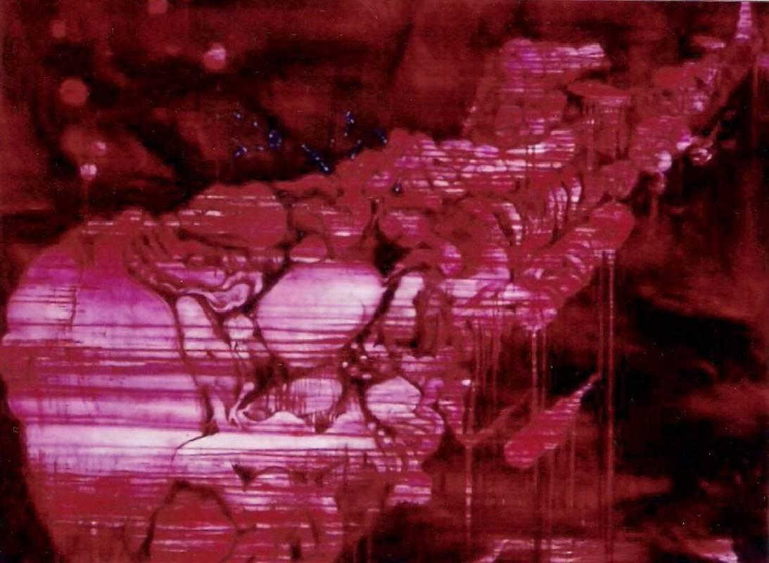 五花肉系列-肉兵器-潛水艇|2006|油彩|195x145cm(130F)