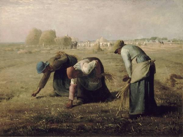 《拾穗》(The Gleaners)。圖/取自wikimedia。