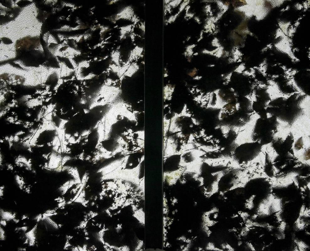 落葉不是 無情物 Dancing Leaves #4, 60x45cm, 高階藝術微噴於William Turner德國無酸館藏蝕刻藝術紙, 2014