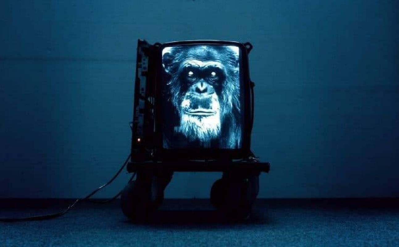 作品將猿人作為歷史象徵,結合人工智慧表現的消費者主義,展現出人類哲學的價值