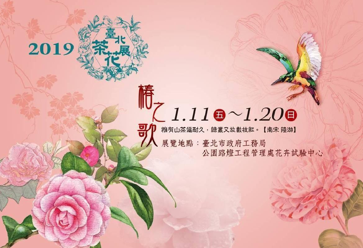 【椿之歌】2019臺北茶花展