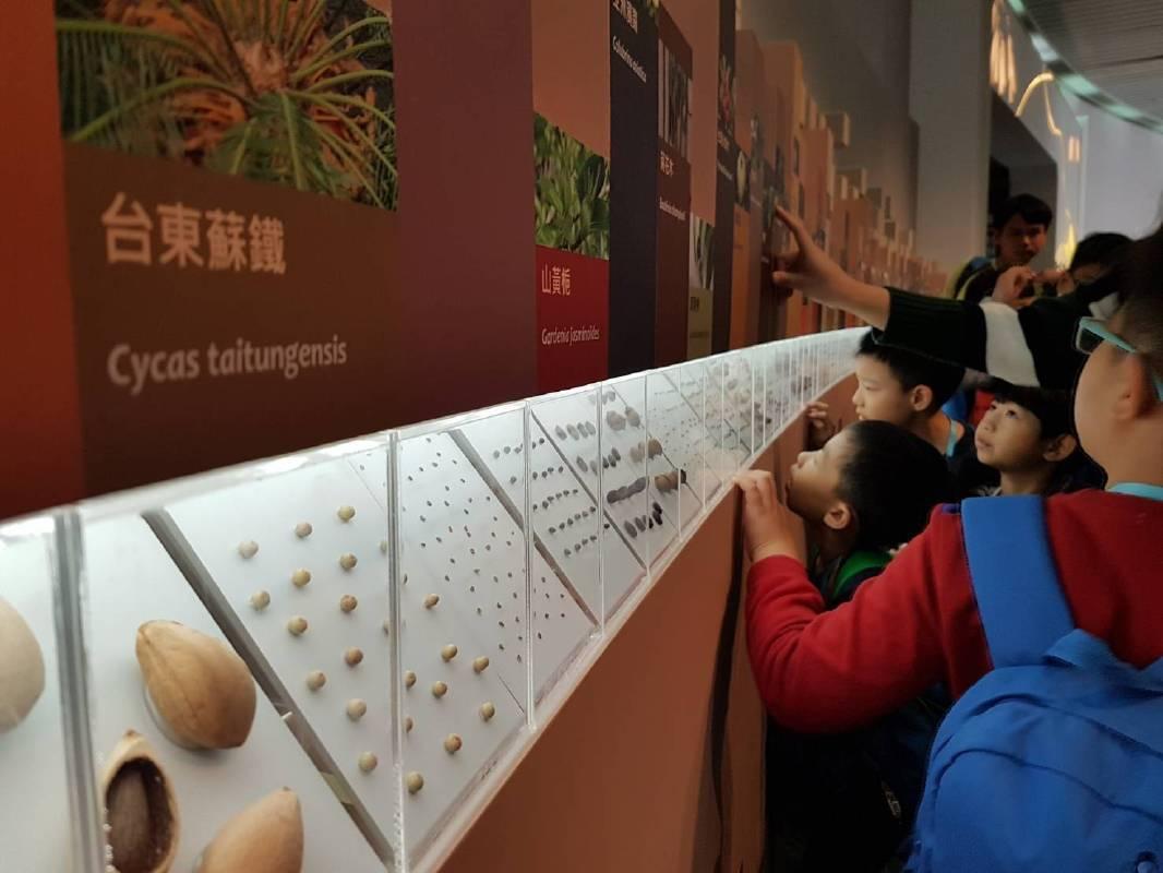 民眾觀賞種子牆