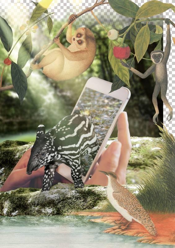 許家維 秘境森林中的幼年馬來貘 2019 金屬支架、藝術微噴於畫布 99×133.5cm
