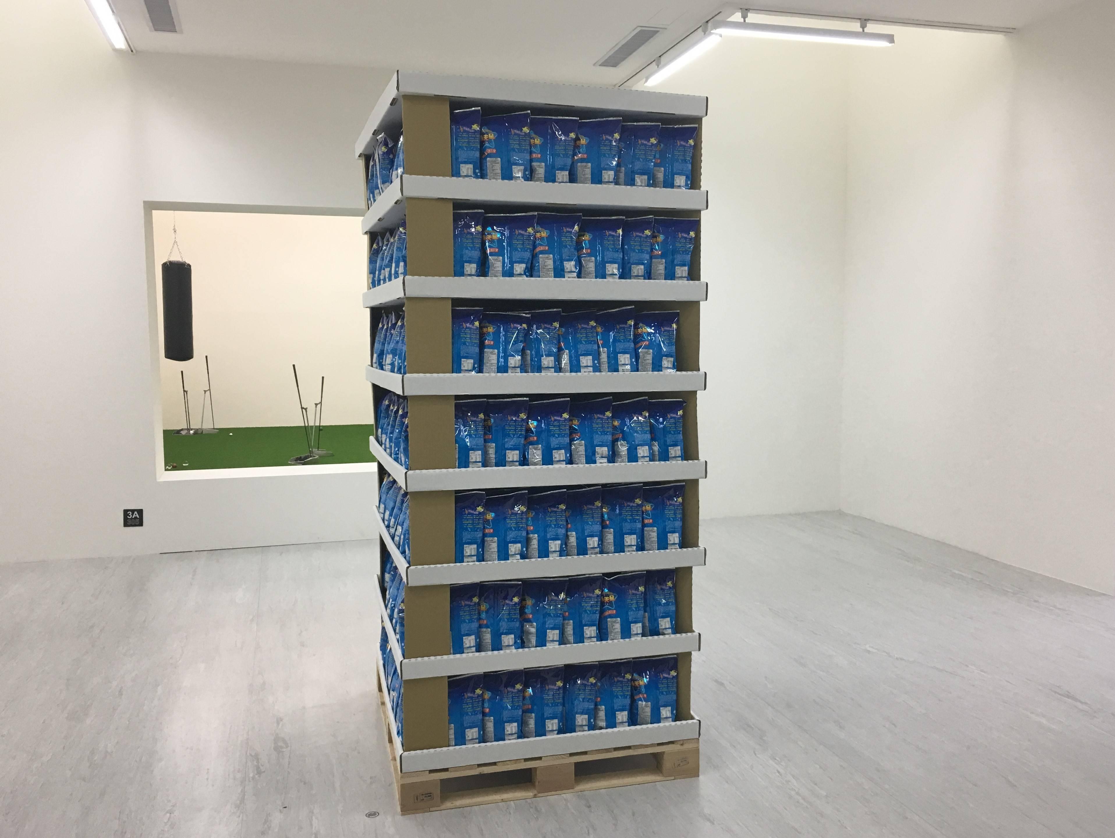 【在放鬆的多數的陽光下】李明學個展 展覽現場實紀。