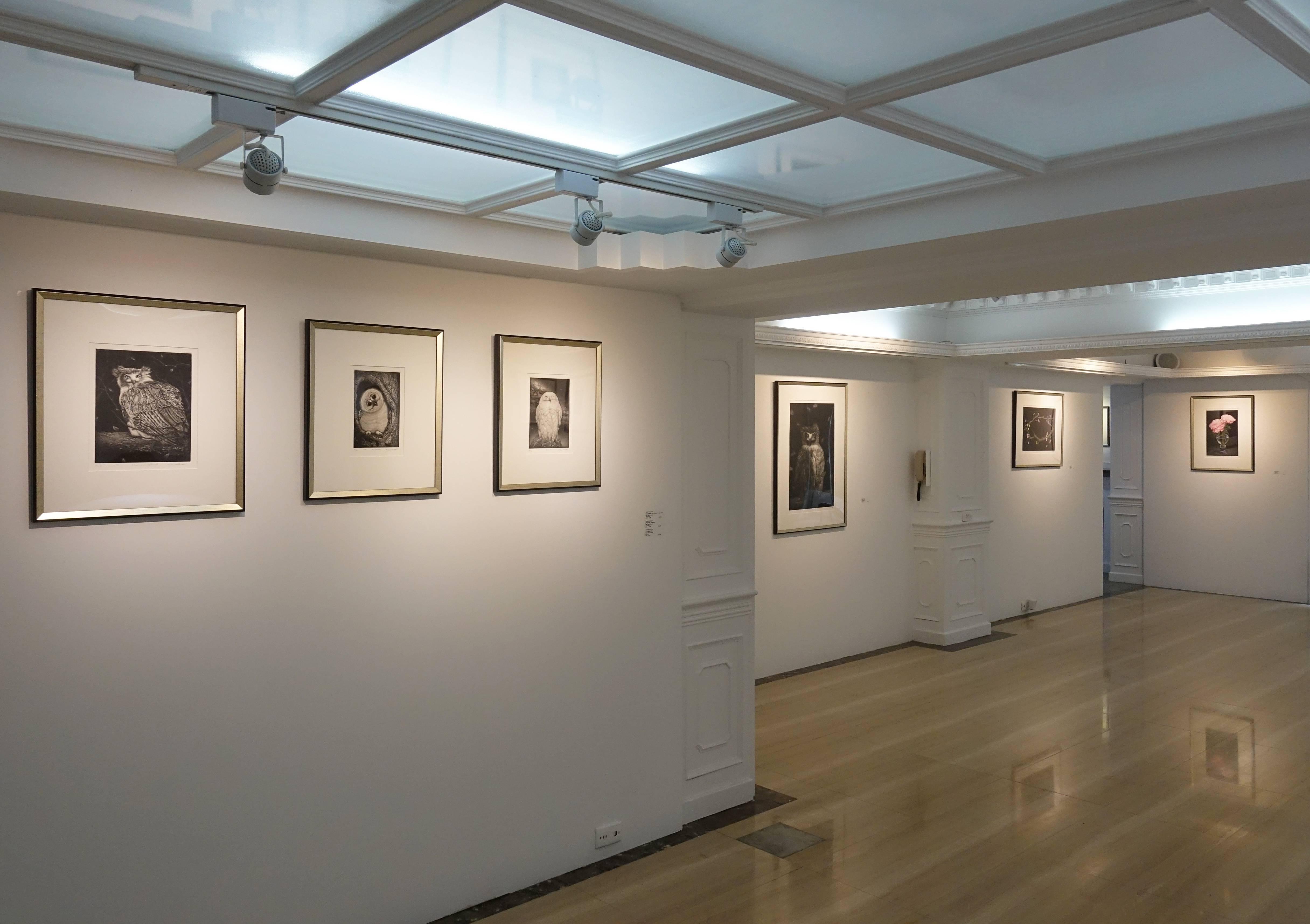 生田宏司銅版畫展 展覽現場一隅。