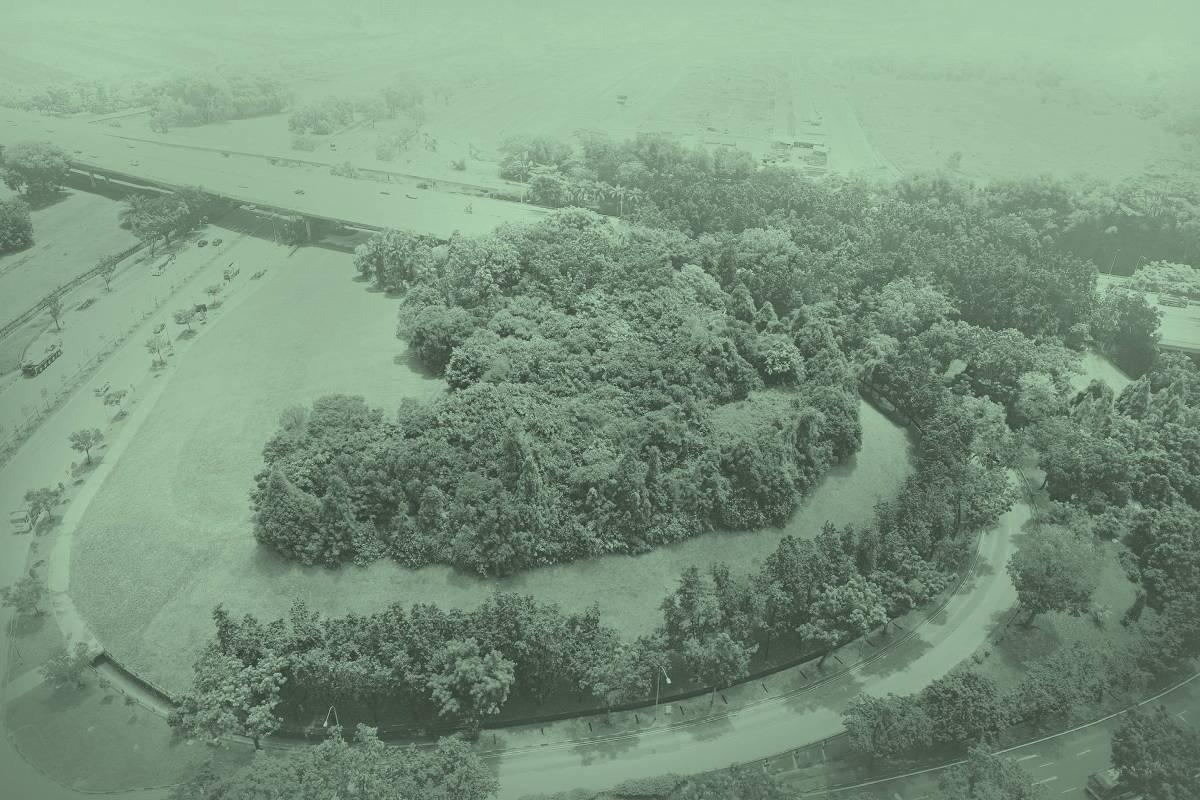 《新森林 (地點I》》  2019 數位微噴 111cm x 74cm