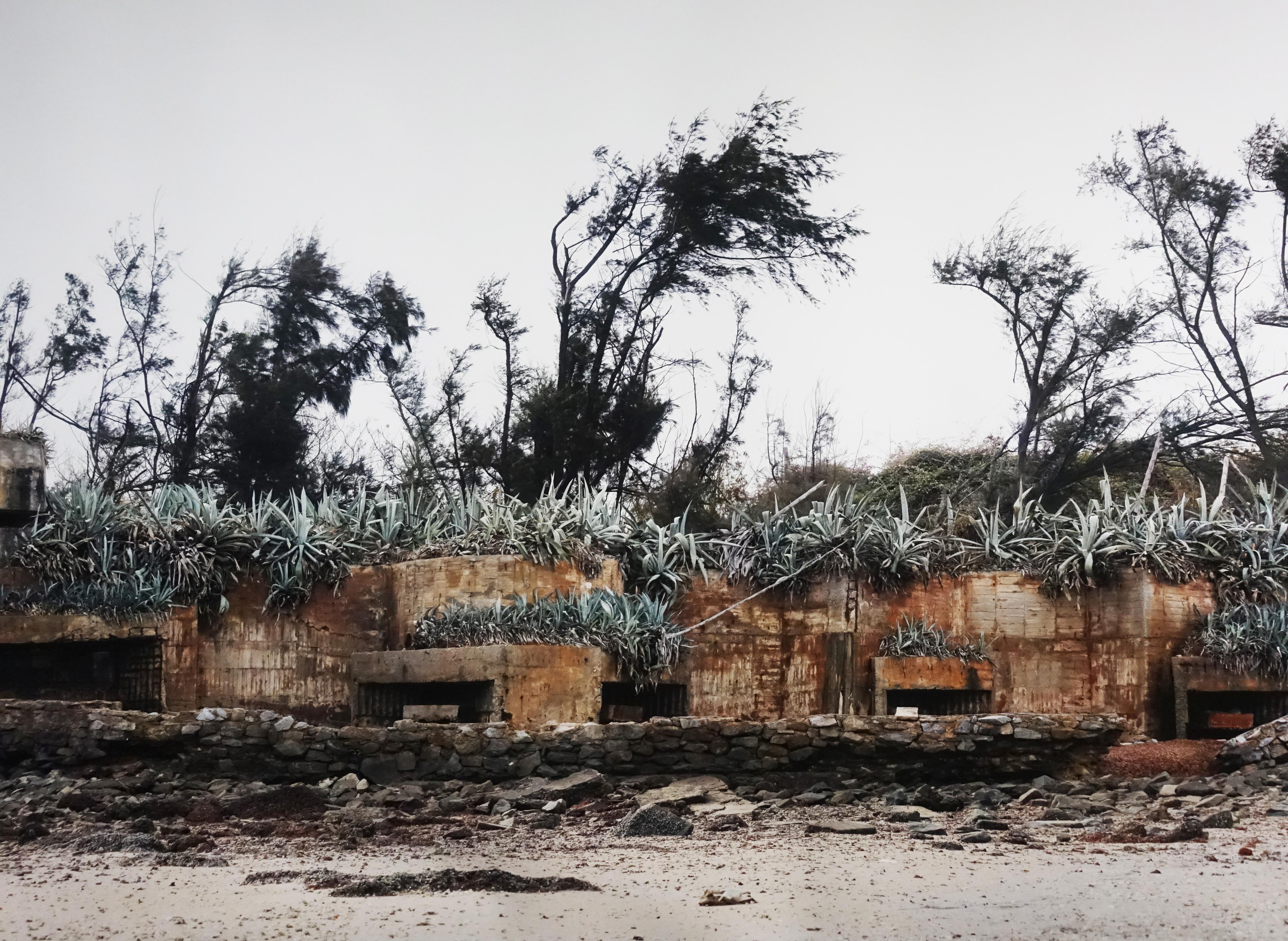 劉芸怡,《歷史造景-碉堡II》細節,135 X457 cm,藝術微噴在德國Hahnemühle藝術紙,2018。