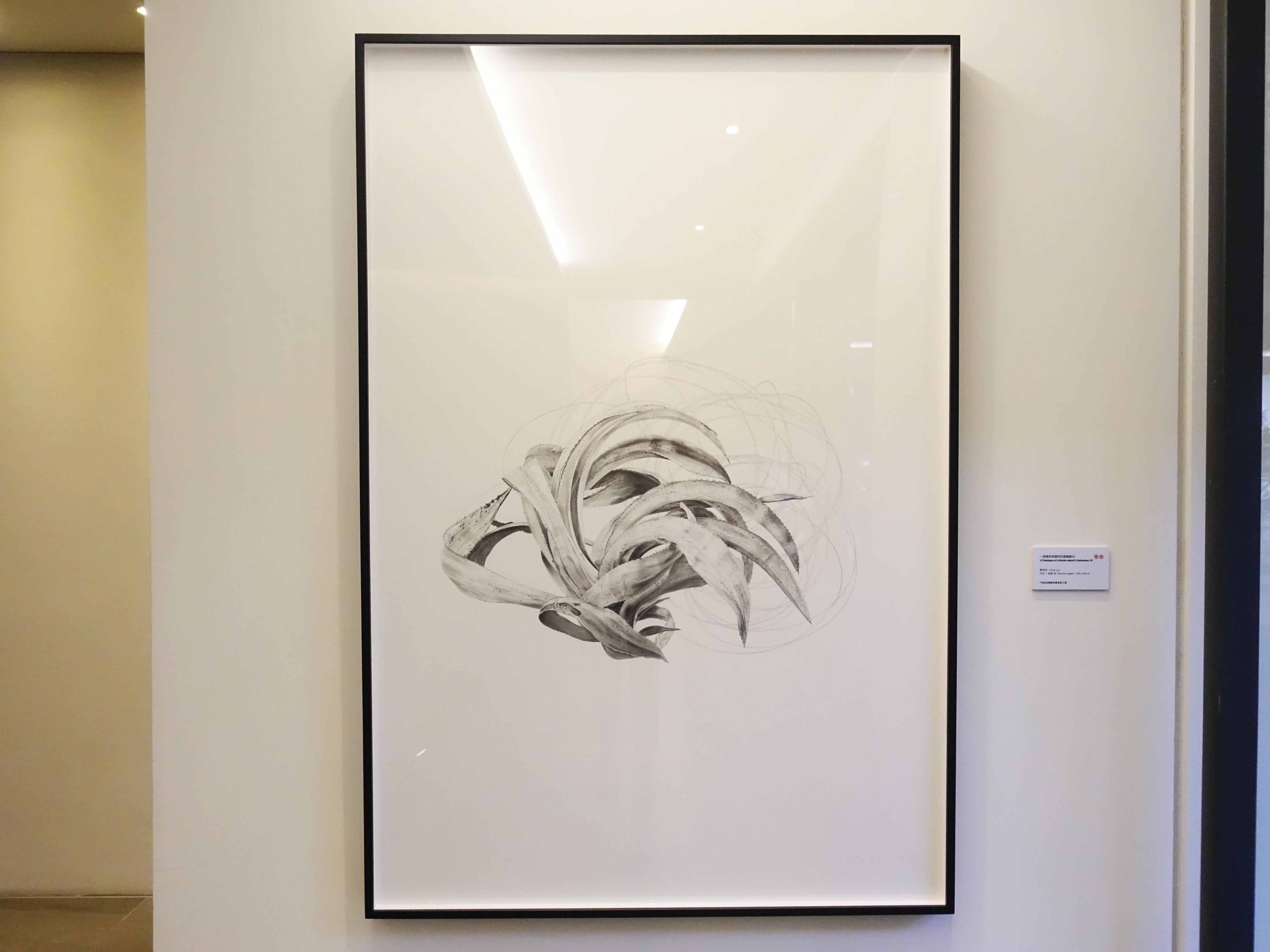 劉芸怡,《一座邊界島嶼的防禦圖鑑VlI》,150 X 100 cm,鉛筆、紙,2019。