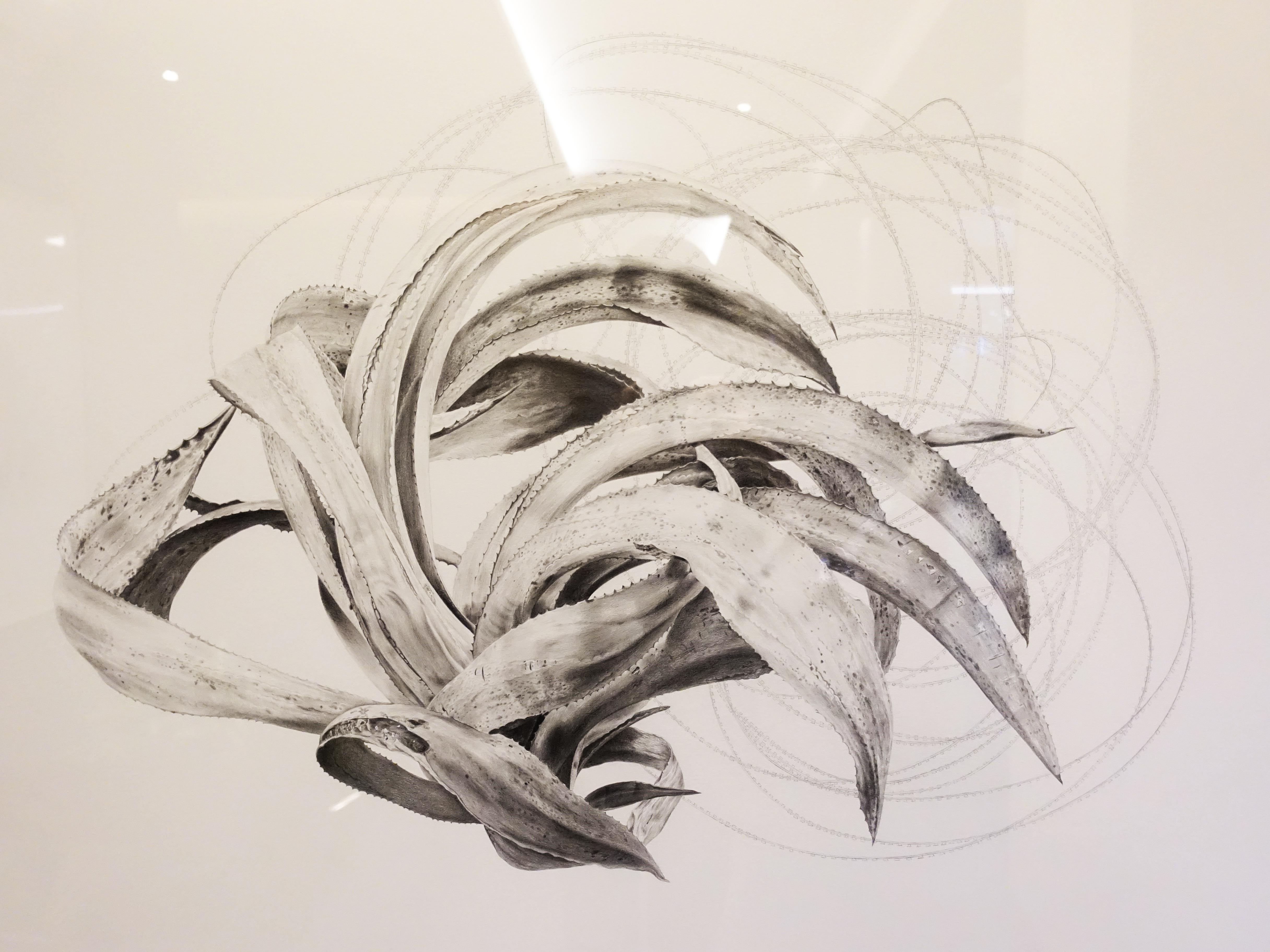 劉芸怡,《一座邊界島嶼的防禦圖鑑VlI》細節,150 X 100 cm,鉛筆、紙,2019。