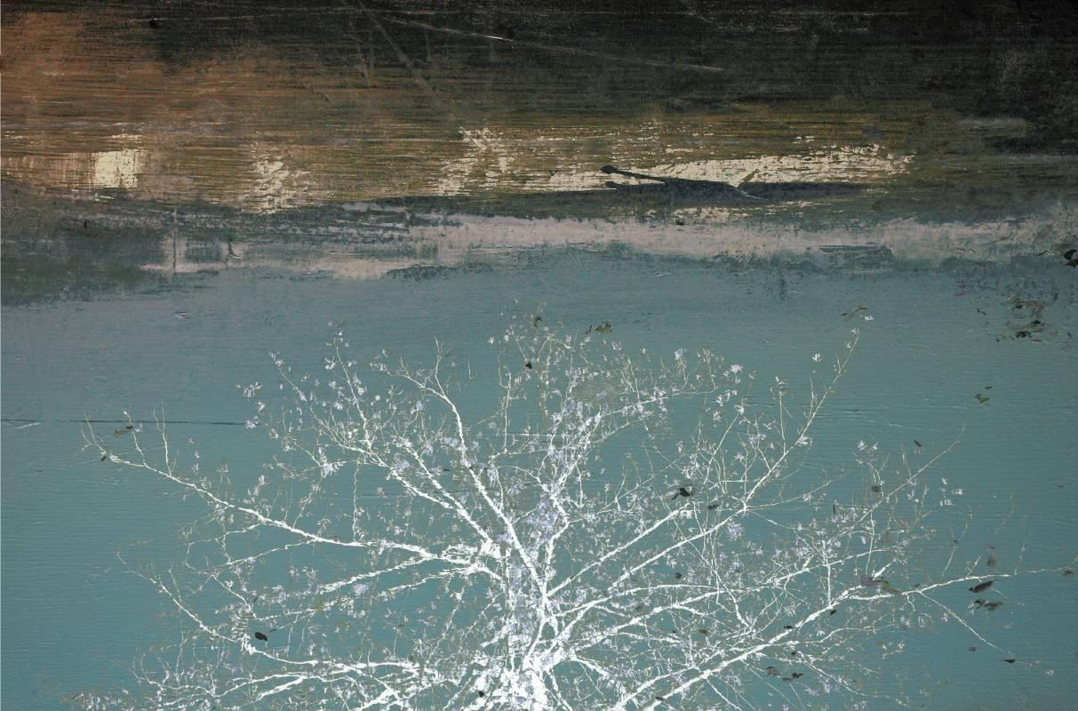 宛在水中央