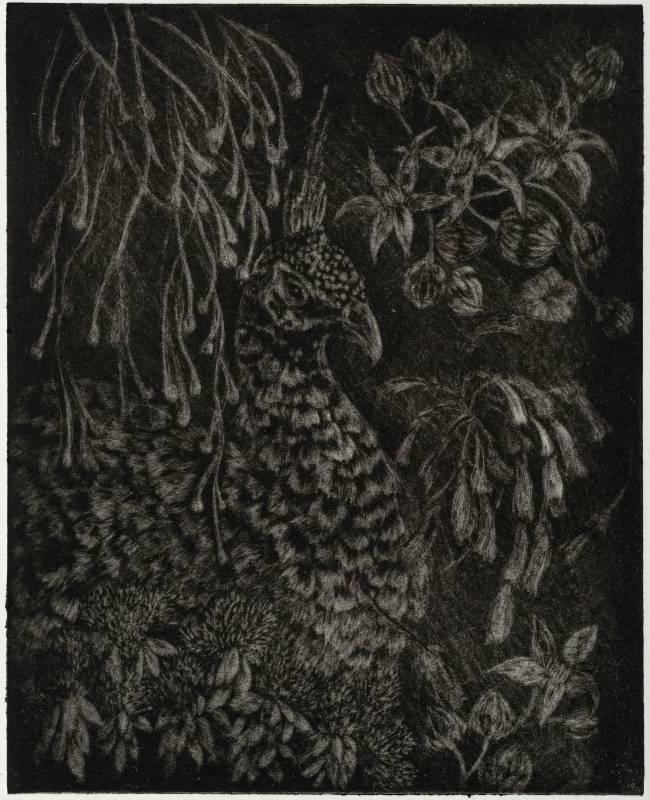 花蔓    Flower vine_版面15X15cm_紙張29X17cm_美柔汀版_2020