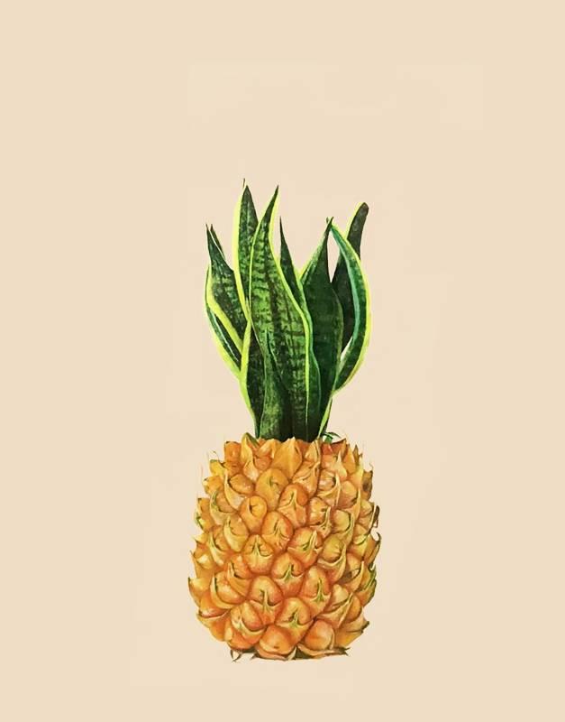 顏昱齊 虎尾鳳梨 2020年 80×60.5cm 油彩,畫布  YEN, Yu-Chi   Hu-Wei pineapple   Oil on canvas