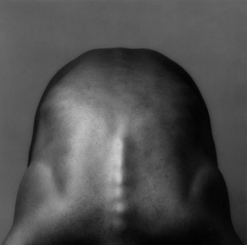 ROBERT MAPPLETHORPE, Donald Cann, 1982, gelatin silver print, edition of 10 + 2 AP, ed. 9_10, image 39 x 38.5 cm  framed 63.5 x 59.5 x 2.5 cm_MAI 36 GALERIE