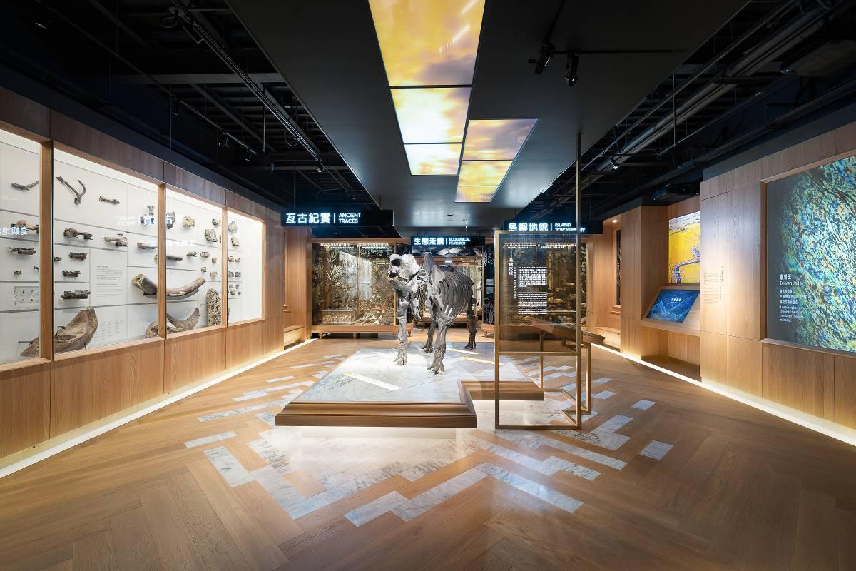 「自然臺灣」展廳-亙古紀實展區