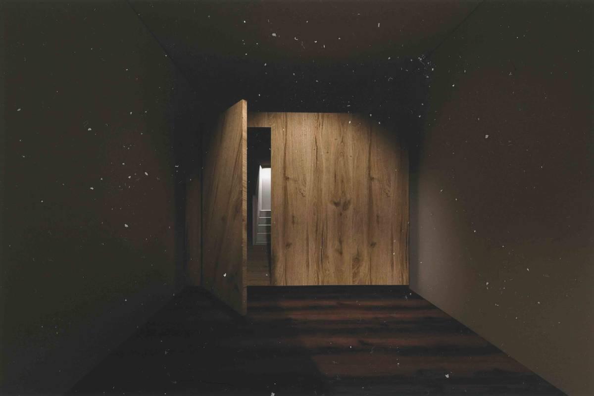 倖存者 The Moment of Consciousness , 3D影像、塵埃, 20x30x4cm, 2021