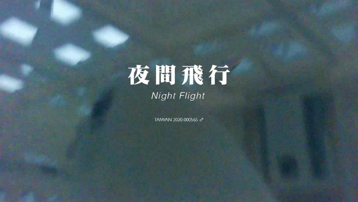 夜間飛行Night Flight, 錄像、彩色有聲, 6分30秒, edition of 8, 2021