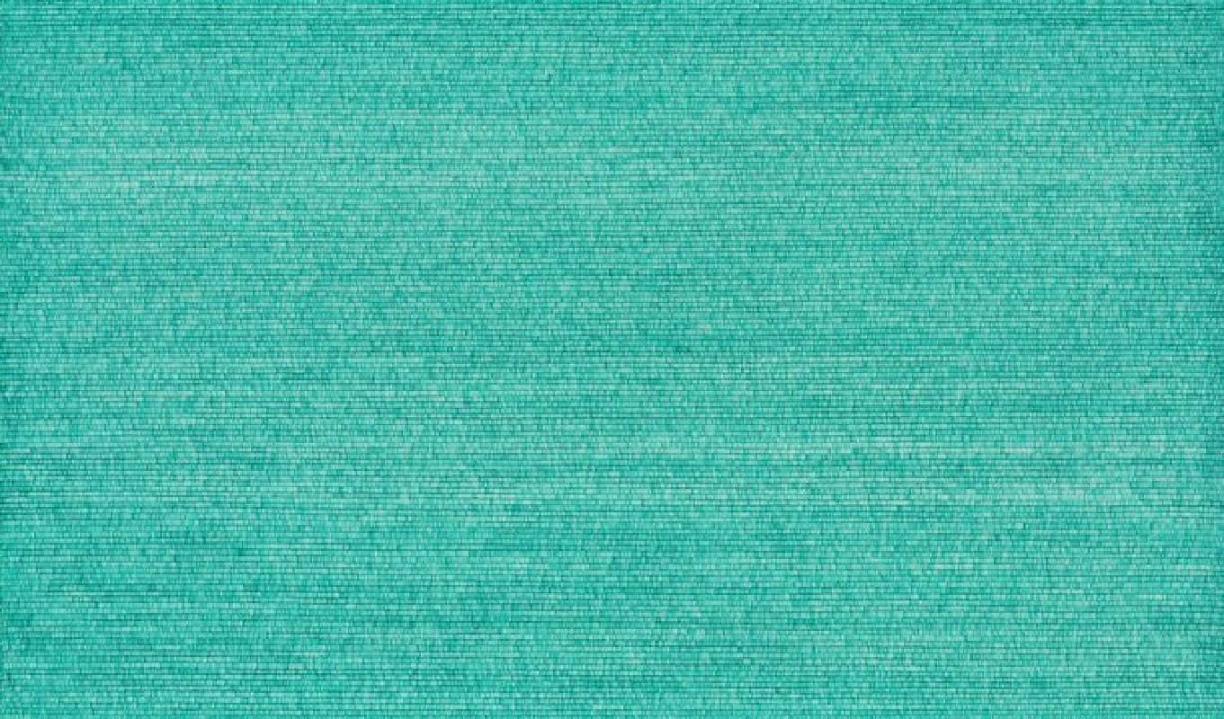 謝蔚榕  紙上種草的園丁08.24.18-09.28.18  75x128cm  中性筆紙本  2018