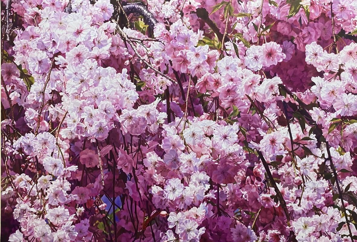 Ling-Shen LIN 林嶺森_Weeping cherry tree 雨晴枝垂_Oil on canva s油彩.畫布_50x72.5cm_2020