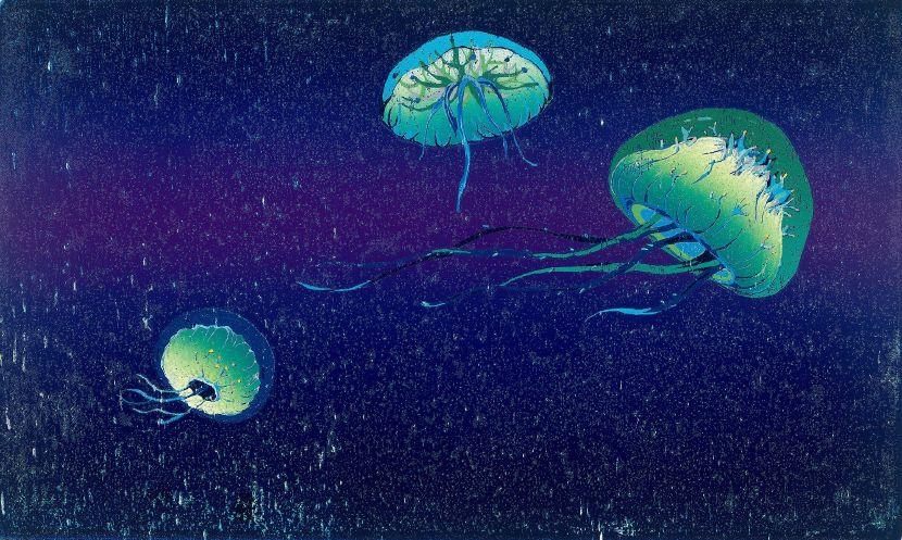李屏宜-海月 Moon Jellyfish