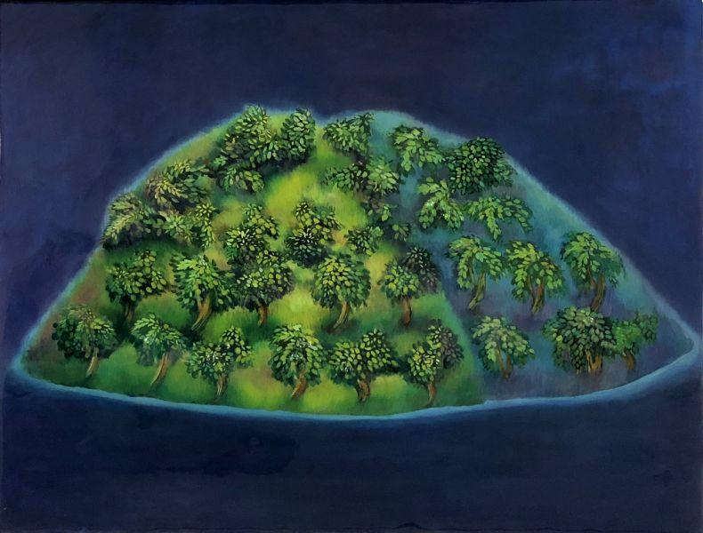 蘇子涵-聚-兩座樹島