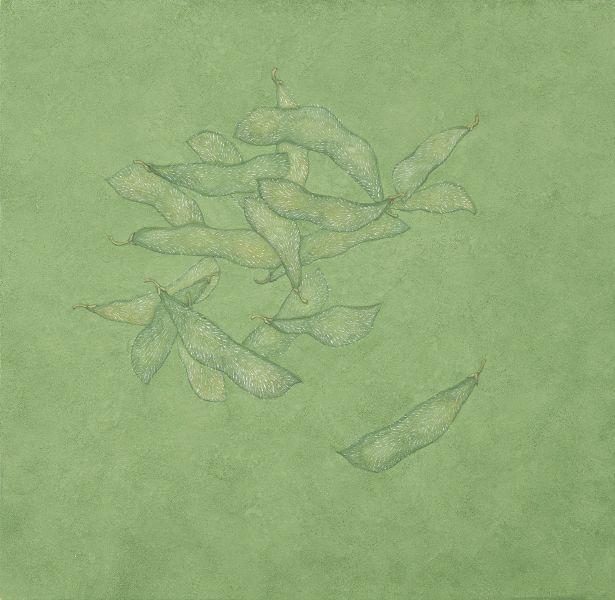 鍾舜文-日常採集-毛豆 Daily collection - vegetable soybean