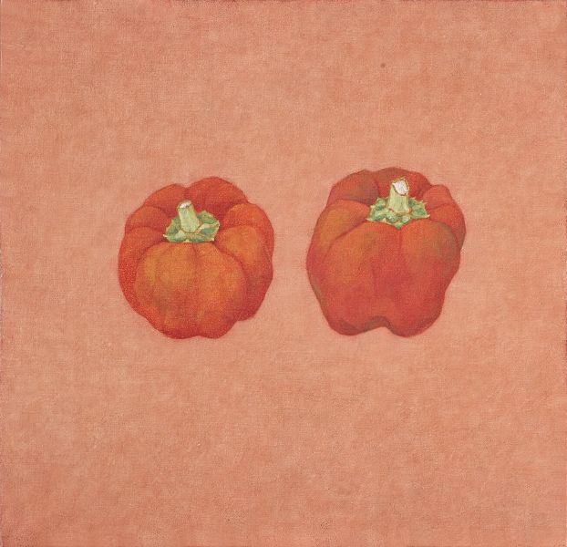 鍾舜文-日常採集-紅山椒 Daily collection - red japanese pepper