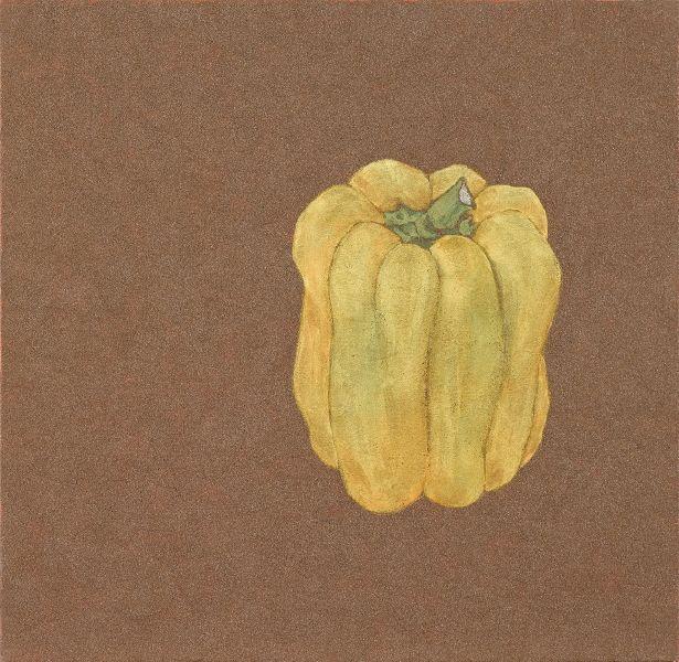 鍾舜文-日常採集-黃山椒 Daily collection - yellow japanese pepper