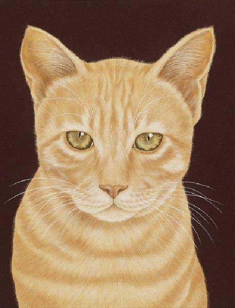 鍾舜文-吾家有貓3 Cats 3
