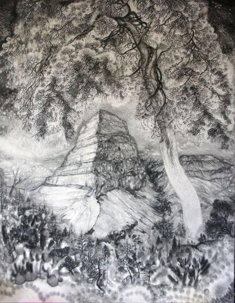 王毓淞-大樹與山02大霸尖山的林道